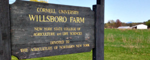 willsboro-farm-cornell-university