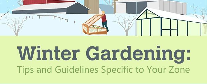 Winter Gardening Tips For Your Zone Adk Farmer Dan